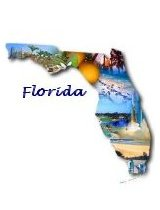 ONLINE Florida All-Lines Certified Claims Adjuster (