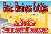 Basic Business Entities And Other Commercial Borrowers